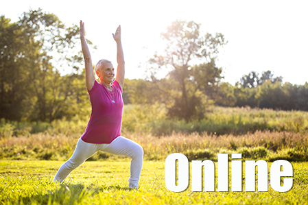 advance your hatha yoga practice  online